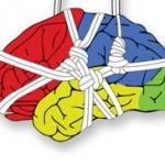 Shibari Brain